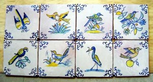 10-x-10-pájaros